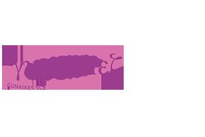 Logo Gunaikes cooperativa sociale