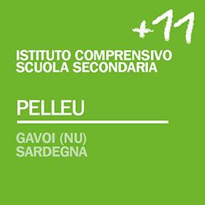 FB_PSR15_scuola_11_pelleu
